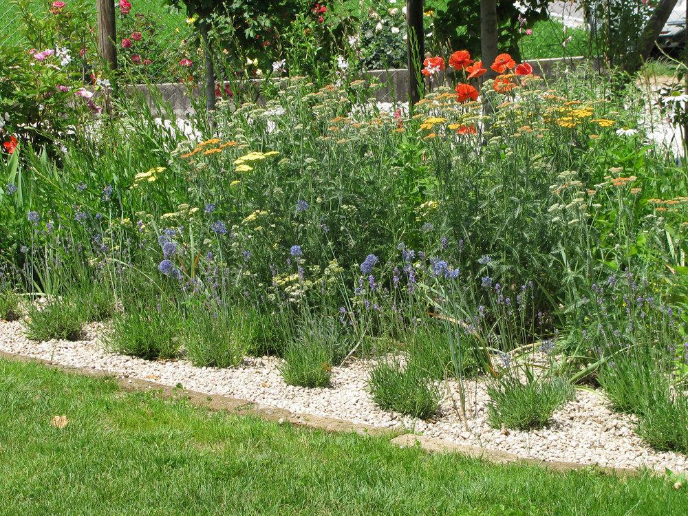 Giardini paola thiella for Orto giardino
