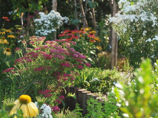 Giardini paola thiella for Giardini di campagna